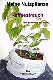 Meine Nutzpflanze, Kaffeestrauch vom Samen bis zur Ernte