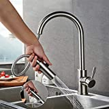 Lonheo Hochdruck Wasserhahn Küche ausziehbar | 360° drehbar Küchenarmatur mit 2 Strahlarten | Edelstahl Armatur Einhebelmischer Spültischarmatur Mischbatterie für Küche