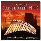 Die Größten Panflöten Hits (inkl. Einsamer Hirte; El Condor Pasa; Lady In Red; One Moment In Time; Blue Bayou; uva.)