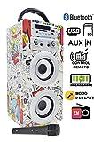 Karaoke Anlage Bluetooth - Kinder Karaoke Player - Mikrofon mit Lautsprecher Boxen Bluetooth Akku-Lautsprecherbox (USB-SD-Slot, AUX, UKW-Radio, Fernbedienung) Modell-025-2