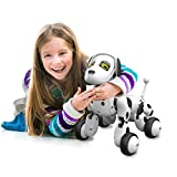 RC Big Robot Dog Intelligente Sensing Spielzeug, mamum RC Smart Hund Sing Dance Walking Fernbedienung Roboter Hund Elektronisches Haustier Kinder Spielzeug