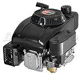 Motor für Motorhacke mit schwerem Schwungrad CPL. Daye dy1p60F Baum senkrecht