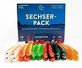 Zanderfang 24 Gummifische zum Zanderangeln mit Gummifisch 24er Set | Sechserpack | 6 Farben | 12,5 cm