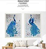 Yonsenner Gemälde zum Aufhängen, 5D-Diamant-Maler-Kits, DIY Vogel-Spirituose, Wohnzimmer, Schlafzimmer, Stick-Diamant-Kreuzstich, 30 x 40 cm, 2 Stück