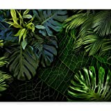 murando - Fototapete tropische Blätter Monstera 400x280 cm - Vlies Tapete - Moderne Wanddeko - Design Tapete - Wandtapete - Wand Dekoration - Natur grün b-C-0224-a-a