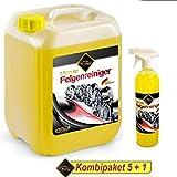 RedFOX24 Premium 6 Liter ProMax Profi Felgenreiniger Konzentrat mit Sprühkopf, Bremsstaubentferner KOMBIPAKET