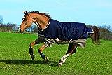 Horseware Amigo Mio Turnout Lite ohne Füllung Regendecke Navy & Tan 115-160 (145)