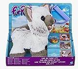 Hasbro FurReal Friends C1156EU4 - Kami mein ich-muss-mal-Kätzchen, Elektronisches Haustier