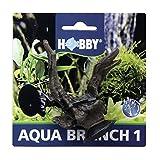 Hobby Aqua Branch 1
