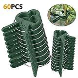 Pflanzen Clips 60 Stk extra groß - Mopalwin Pflanzenklammern stabile Clip für Pflanzen Sicherung Unterstützt Einzupflanzen (30 große + 30 kleine)