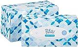 Amazon Marke -  Presto! 4-lagige Papiertaschentücher, 12er-Pack (12 x 100 Tücher)