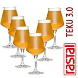 6 x Craftbeer Verkostungs Glas / Stilglas / Sommelierglas | 425 ml