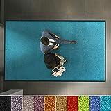 etm Hochwertige Fußmatte | schadstoffgeprüft | bewährte Eingangsmatte in Gewerbe & Haushalt | Schmutzfangmatte mit Top-Reinigungswirkung | Sauberlaufmatte waschbar & rutschfest (40x60 cm, Türkis)