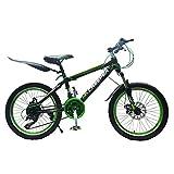 LQZHP Kinderfahrrad 50,8 cm Sport Kinderfahrrad für Jungen und Mädchen inkl. Sicherheitspaket BMX Edition Geschenke