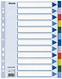 Esselte Blanko Plastikregister (Polyproplyen, A4, 12 Blatt) Mehrfarbig
