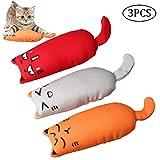 Nuosen 3 Stücke Katzenminze Plüsch Spielzeug, Catnip Toys Set für Katze und Kätzchen