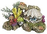 Nobby 28577 Aquarium Dekoration Aqua Ornaments Muschel mit Pflanzen