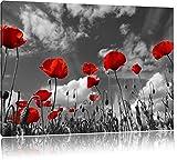 Wundervolle Wiese mit roten Blumen Schwarz/Weiß, Format: 120x80 auf Leinwand, XXL riesige Bilder fertig gerahmt mit Keilrahmen, Kunstdruck auf Wandbild mit Rahmen, günstiger als Gemälde oder Ölbild, kein Poster oder Plakat