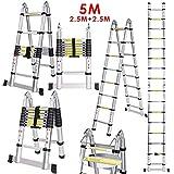 Ogeled Leiter Anlegeleiter Teleskopleiter mit Rutsch-Gummi Mehrzweckleiter Ausziehbar 150 kg aus Aluminium (5M Klappleiter)