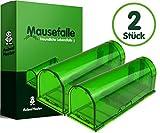 Animal Master 2x Professionelle Mausefalle – Tierfreundliche Lebendfalle für Mäuse im Doppelpack - Umweltfreundlich und perfekt geeignet für Innen, Außen, Garten, Garage und Haus