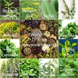 Kräuter Mix (Küchenkräuter) - 13 Arten - 1430 ++ Samen - sortenrein verpackt -
