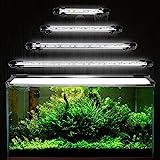 GreenSun Aquarium LED Beleuchtung Leuchte Lampe 21 LEDs 5050SMD 38CM Lighting für Fisch Tank EU Stecker weißlicht Wasserdicht