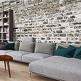murando - Vlies Fototapete 500x280 cm - Vlies Tapete - Moderne Wanddeko - Design Tapete - Textur Ziegel Mauer Beton f-A-0457-a-a