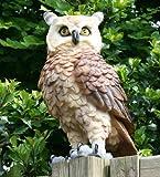 Dekofigur Eule Uhu Greifvogel Gartenfigur Tierfigur Gartendekoration Vogeldeko