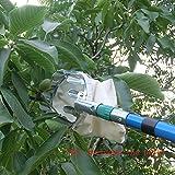Tookie Obstpflücker, silber leicht Obstpflücker Korb swop-top Kopf für Picking Apple Orange Pear Picking Werkzeug