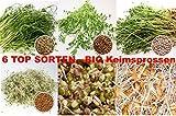 2,6 kg BIO Keimsprossen Mischung -6 Sorten Mix- Keimsaat Samen für die Sprossenanzucht 250g Erbsen, 500 g Kichererbseb, 100 g Linsen, 250 g Alfalfa, 500 g Mungobohnen, 1 kg Weizen Sprossen Microgreen Mikrogrün