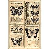 florilèges Design fha115030Stempel Scrapbooking Schmetterlinge-Seite in Seite beige 15x 10x 2,5cm