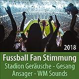 Fussball Stadion Stimmung: Fans, Trommeln, Gesänge, Applaus, Pfiffe