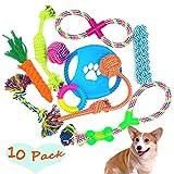FIRIK Hundeseil Spielzeug 10 Set Pack Variety Pet Spielzeug für Mittlere bis Kleine Hündchen