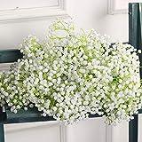 EXQULEG 10 künstliche Schleierkraut-Blumenstrauß Dekorative für Hochzeiten, Zuhause, Basteln,weiß