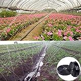 AiCheaX 100 mt 0~5 Löcher 1'N450.2mm Micro Bewässerungsrohr Micro Spray Gürtel Wassersparende Tropfband Landwirtschaftliche Bewässerung Wasserleitungen - (Farbe: 2 Löcher)