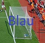 Hochwertige Tornetze (Paar) für Stadion Fußballtore, 7,3 x 2,4 m, geflochtenes 4,5 mm Netzgarn (blau) [Net World Sports]