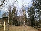 Volierennetz - Breite 5,0m x Länge 10,0m, 10,0cm, europ. Fertigung, Geflügelnetz