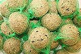 Meisenknödel 100 Stück mit Netz mit Insekten Anhaltiner Vogelfutter