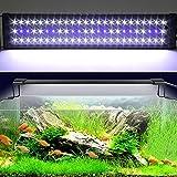 Etime Aquarium Beleuchtung Aquariumlicht LED Aquariumleuchten Aquariumlampen Aufsetzleuchte weiß+blau für 60-80cm Aquarium (60-80cm)