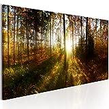 murando - Bilder Wald 150x50 cm - Leinwandbilder - Fertig Aufgespannt - Vlies Leinwand - 1 Teilig - Wandbilder XXL - Kunstdrucke - Wandbild - Waldlandschaft Natur Wald Panorama Baum c-B-0173-b-a