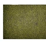 Ufermatte grün 150 cm breit / 10 m Lang Randbaumatte Teichmatte 6,49Euro / m²