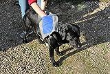 Hundehandtuch Microfaser mit Eingrifftaschen Trockentuch Pfotentuch Schmutztuch extrem saugfähig für alle Fellarten geeignet waschbar outdoor Herbstwetter TOP Qualität!
