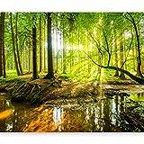 murando - Fototapete Wald 300x210 cm - Vlies Tapete - Moderne Wanddeko - Design Tapete - Wandtapete - Wand Dekoration - Natur Baum grün c-B-0241-a-a