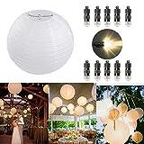 Dazone 10 Stücke Papierlaterne weiß Lampion + 10er Warmweiße Mini LED-Ballons Lichter, rund Lampenschirm Hochtzeit Party Dekoration Papierlampen 8'(20cm)