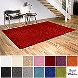 Shaggy-Teppich | Flauschige Hochflor Teppiche fürs Wohnzimmer, Esszimmer, Schlafzimmer oder Kinderzimmer | einfarbig, schadstoffgeprüft, allergikergeeignet (Rot, 120x170 cm)