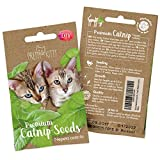 PRETTY KITTY Samen für Katzen, Premium Saatgut (Nepeta Cataria) für 150 Katzenminze Pflanzen, Grün