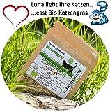 SiS Successfulldeas - SOLUTIONS - Lunas Bio Katzengrassamen  - 1 Beutel mit 30g Saatmischung für ca. 15 Töpfe fertiges Katzengras in wiederverschliessbarem Beutel