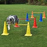 4 x Kombi-Kegelhürde 50 im Set, mit Stange 100 cm, für Agility - Hundetraining