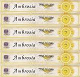 BERK - Räucherstäbchen - Ambrosia - Duft der Götter - 6 Packungen