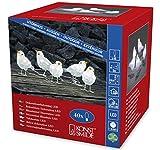 Konstsmide 6144-203 LED Acrylfigur Vögel/5er- Set/für Außen (IP44)/24V Außentrafo/40 kalt weiße Dioden/transparentes Kabel